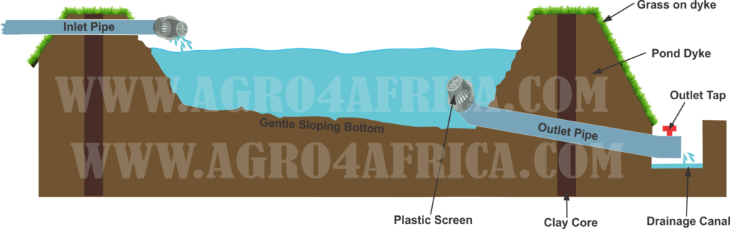 Cross Section of an Earthen Fish Pond