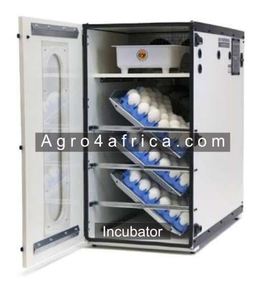 An Incubator